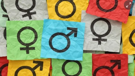 Our gender is not for others to decide. A bill for trans people to self-identify is a good start
