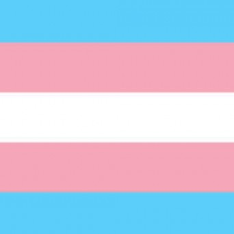 New Zealand's transgender health body supports AusPATH position